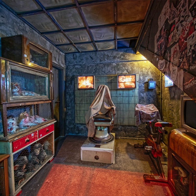 Der Zoo des Todes Escape Room Skurrilum Hamburg